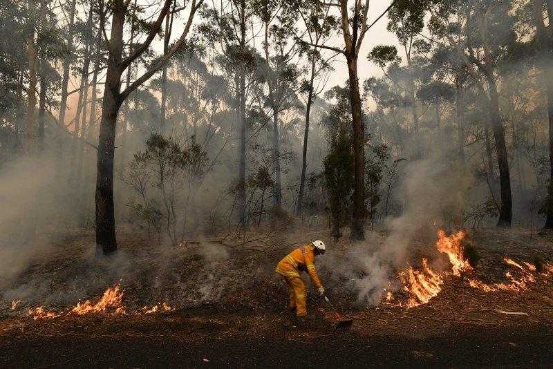 Avustralya'daki yangınların kül ettiği alan 10 milyon hektara yaklaştı, 480 milyon hayvan öldü