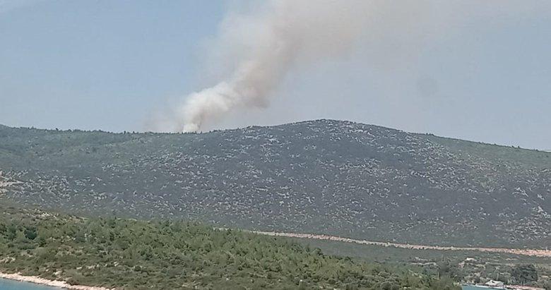 Son dakika: İzmir'de orman yangını!