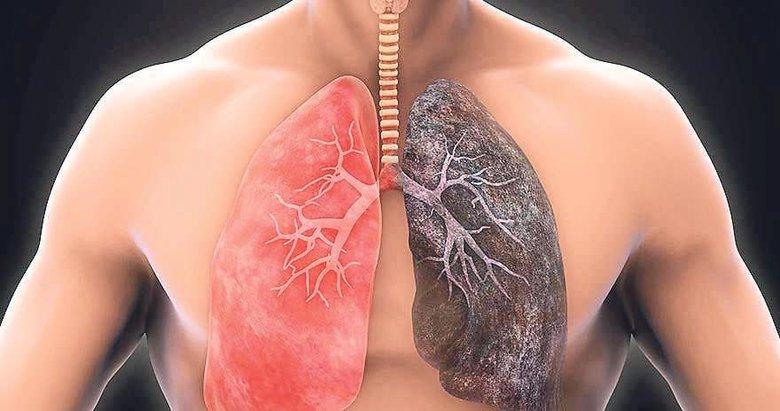 Akciğeri temizleyen mucizevi besinler