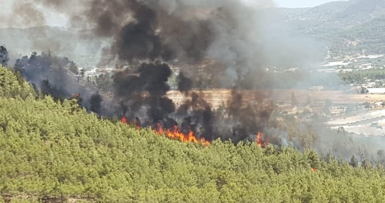 Fethiye ilçesinde çıkan yangın söndürüldü