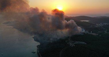 Milas'taki 80 hektarlık ormanlık alan zarar gördü! İşte yürek yakan görüntü
