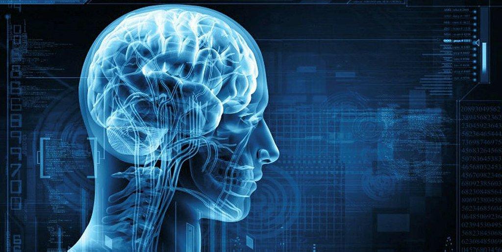 Bu besinler beyin hücrelerini yenileyip, hafızayı güçlendiriyor