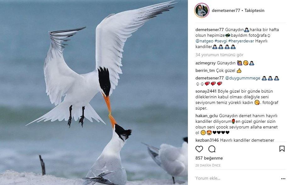 Ünlülerin Instagram paylaşımları
