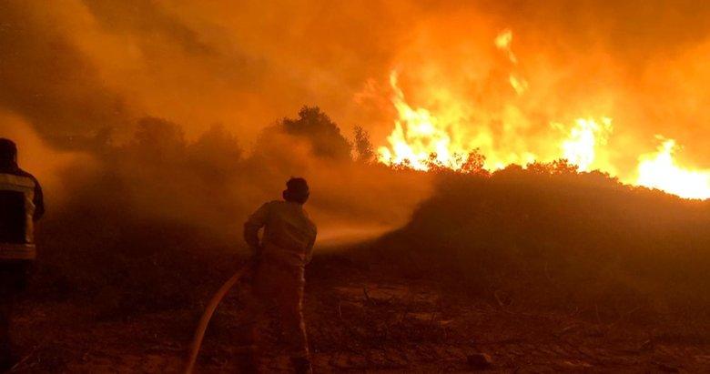 Akşam saatlerinde başlamıştı! İşte Manisa'daki yangında son durum....