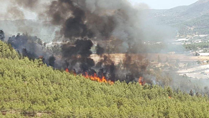 Fethiye'de ormanlık alanda yangın çıktı