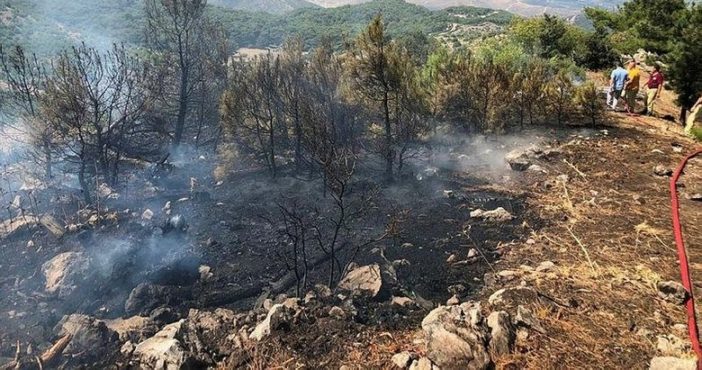 Piknik yaparken ormanı yaktılar