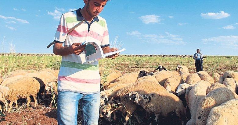 Koyun otlatırken dişçiliği kazandı