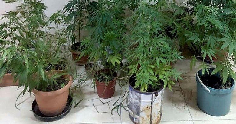 Milas'ta uyuşturucu operasyonu