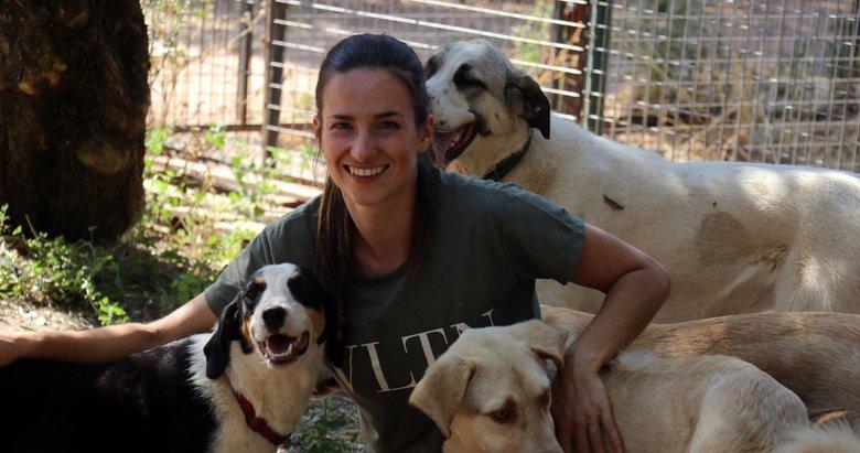Hollandalı gelin, sokak köpeklerinin annesi oldu