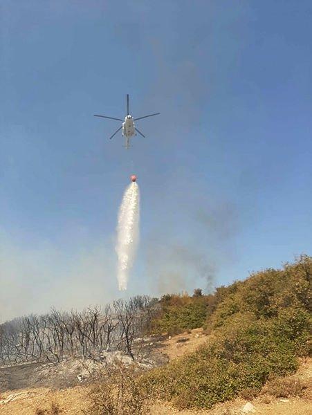 Tavaklı'daki orman yangını kısmen kontrol altında