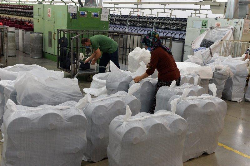 Uşak'tan 62 ülkeye gönderiliyor! Ülke ekonomisine 75 milyon dolarlık katkı