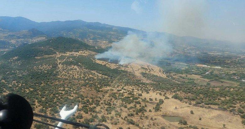 İzmir'de makilik ve zeytinlik alan yangını! Havadan karadan müdahale