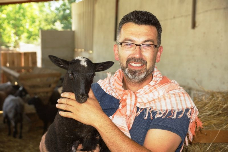 Aydın'da hobi olarak başladı! 14 tane koyun, 8 ayda 40'a ulaştı