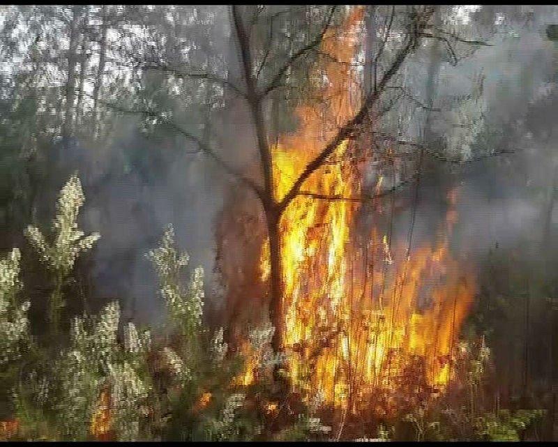 Şüpheli yangınlar