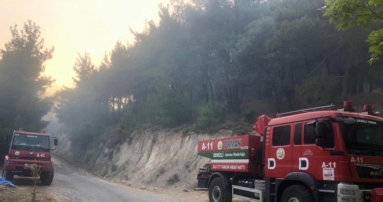 Manisa'daki orman yangınını söndürme çalışmaları sürüyor