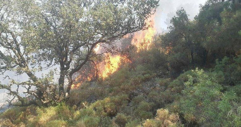 Fethiye'de orman yangını! 5 dönüm alan zarar gördü