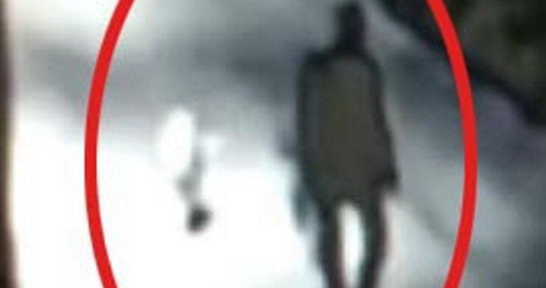 Uşak'ta korkunç olay! Sokak köpeğini öldüren kişi doktor çıktı