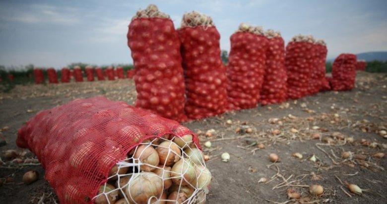 Soğan fiyatları düşüşe geçti
