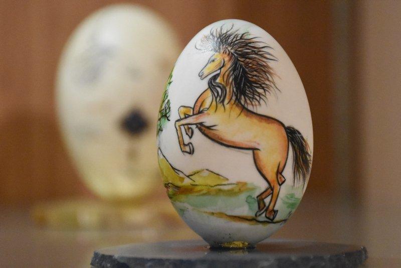 Afyonkarahisar'da Yumurta Müzesi görenleri şaşırttı