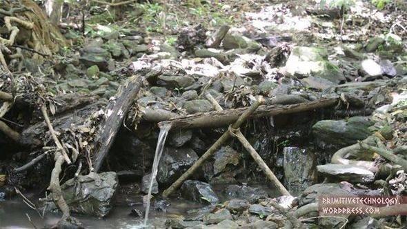 Ormanda su gücüyle bakın ne yaptı!