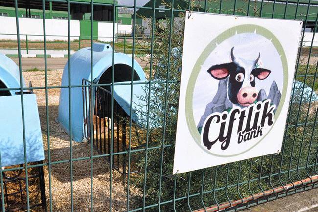 Çiftlik Bank üyelerine ücretler geri ödenecek mi?