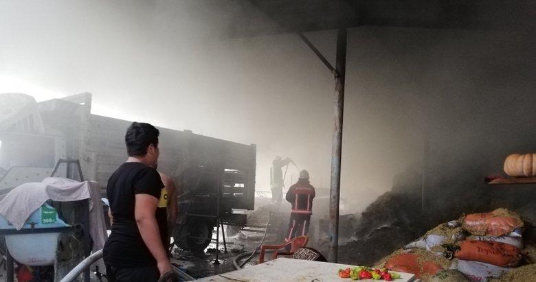 Manisa'da çiftlikte yangın çıktı! 800 saman balyası kül oldu