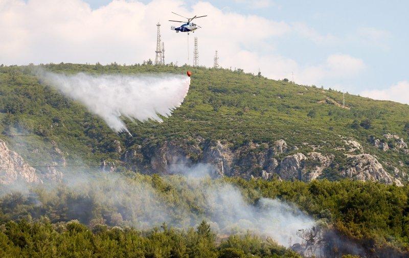 İzmir Bornova'da orman yangını