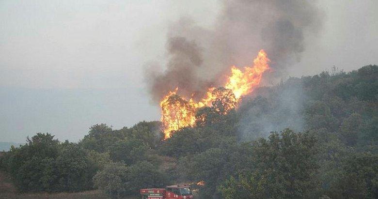 Manisa'da 6 farklı noktada çıkan yangında 15 hektar alan zarar gördü