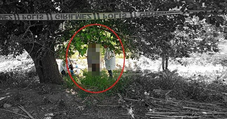 Aydın'da gizemli ölüm! Polis ekipleri ağaca asılı halde buldu