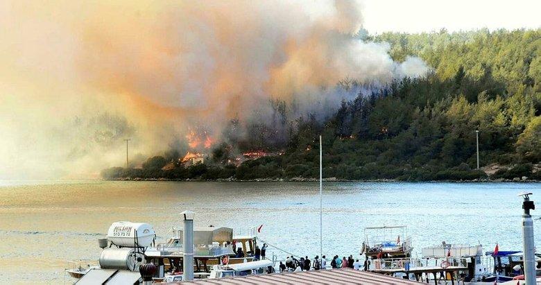 Bodrum'daki Pina Yarımadası'nda 80 hektar orman kül oldu! Otellerde sıkışanlar canlarını böyle kurtardı