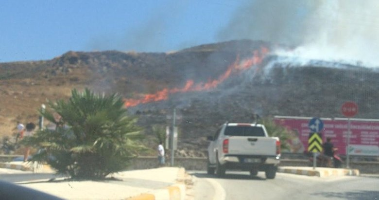 İzmir'de iki ilçede çıkan yangın söndürüldü