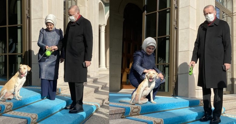 Emine Erdoğan paylaştı: Cumhurbaşkanımızı Leblebi ile uğurladık