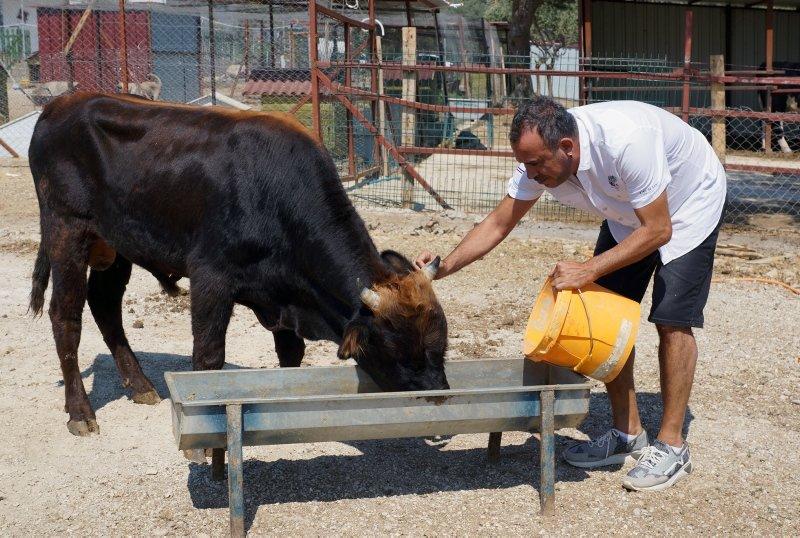 Haluk Levent dana Ferdinandı ziyaret etti