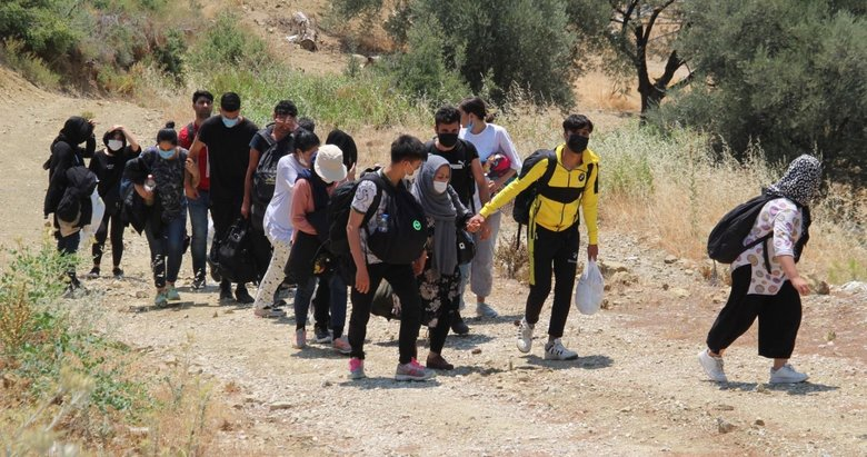 Kaçak göçmenler ormanda yakalandı