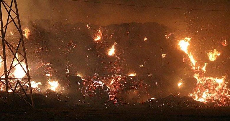 Afyonkarahisar'da biyokütle enerji santralindeki yangın kontrol altına alındı