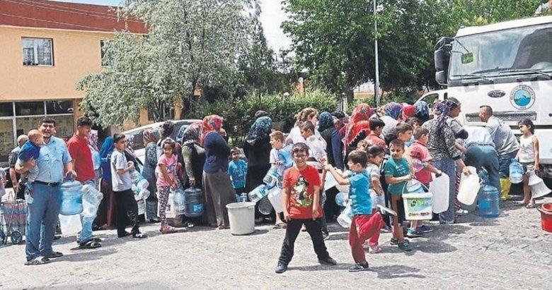 İzmir Foça'da her yıl aynı çile