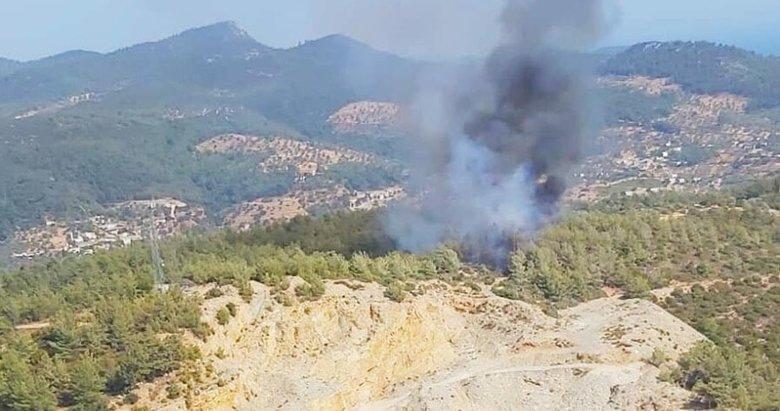 Bodrum'daki orman yangını büyümeden söndürüldü