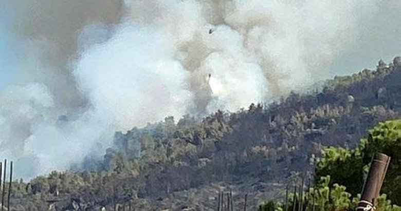 Aydın'da orman yangını! 3 helikopterle müdahale ediliyor