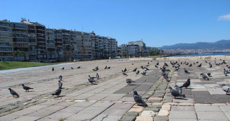 İzmir sokakları kuşlara kaldı
