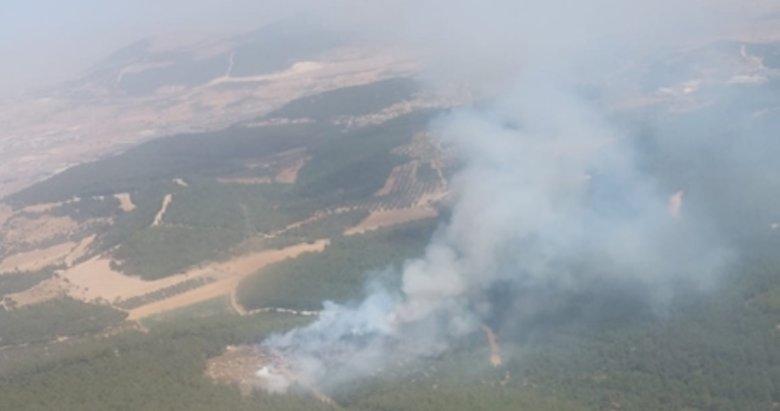 Son dakika: İzmir'de orman yangını