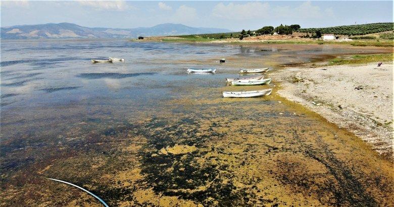 Bir zamanlar 'kuş cennetiydi, şimdi kuraklık tehlikesi ile karşı karşıya! Kurumaya yüz tutan Marmara Gölü havadan görüntülendi