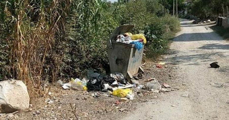 Milas'ta toplanmayan çöpler vatandaşı isyan ettirdi