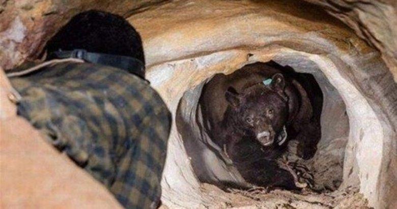 Girdiği mağarada hayatının şokunu yaşadı! Bir anda ortaya çıktı...
