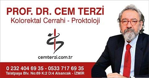 Prof. Dr. Cem Terzi