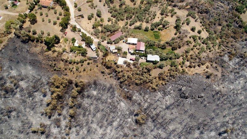 Muğla'da yanan ormanlık alan havadan görüntülendi