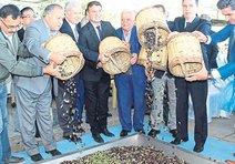 Başkan Akın'dan Germencik'e zeytinyağı tesisi müjdesi