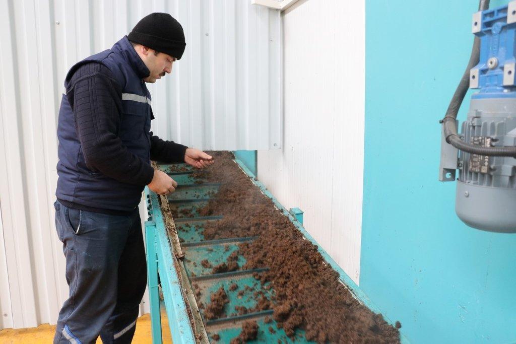 Denizli'de üretildi! Çölde domates yetiştirilebilecek