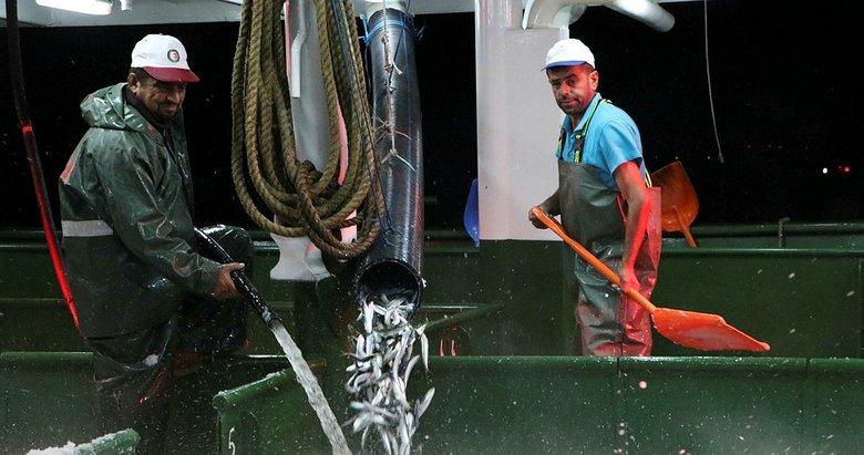 Çanakkale'de, yeni sezonun ilk gecesi 25 ton sardalya avlandı