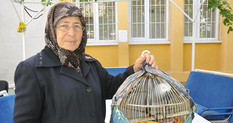Talih kuşu 'Ebubekir'