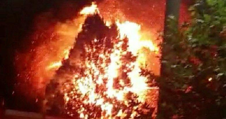 Manisa'da elektrik tellerinden çıkan yangın çam ağaçlarını yaktı